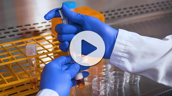 Watch our instructional video for step-by-step guidelines for setting up the CFU assay using methylcellulose-based MethoCult™ medium.