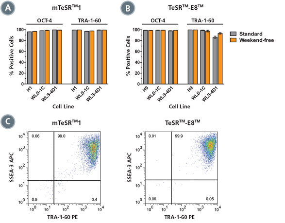 High Expression of Pluripotent Stem Cell Markers in Cells Cultured with the Weekend-Free Protocol