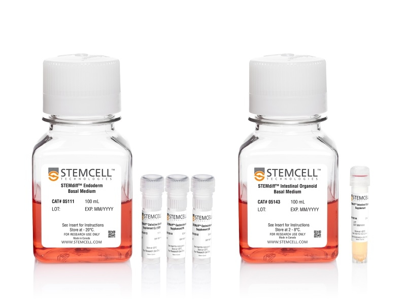 STEMdiff™ Intestinal Organoid Kit