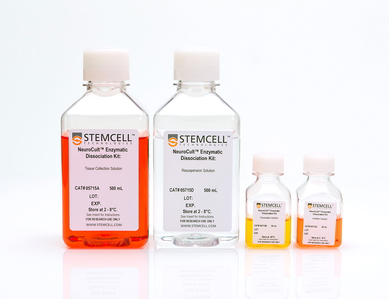 NeuroCult™ Enzymatic Dissociation Kit for Adult CNS Tissue (Mouse and Rat)