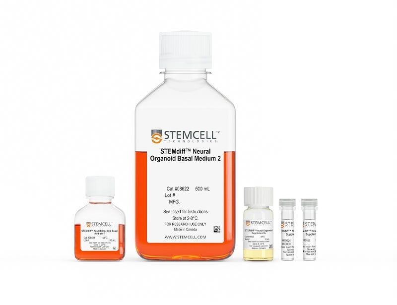 STEMdiff™ Dorsal Forebrain Organoid Differentiation Kit