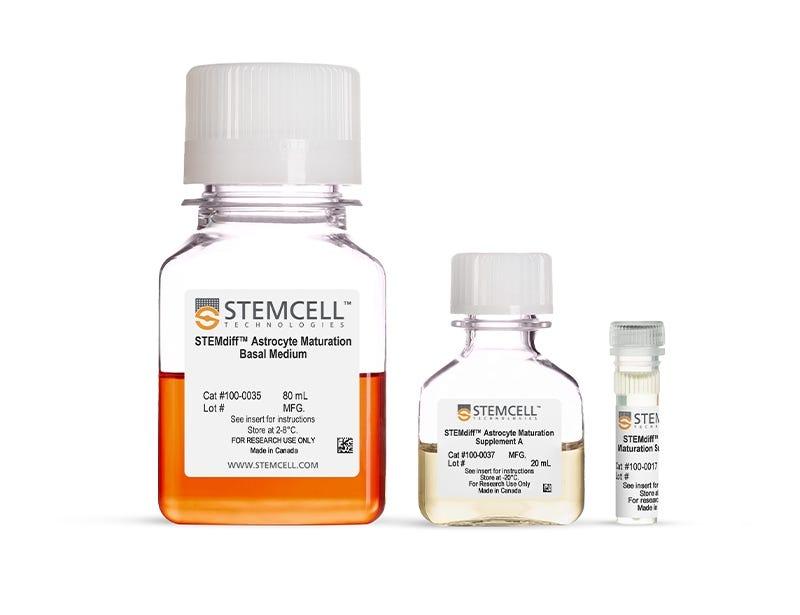 STEMdiff™ Astrocyte Maturation Kit
