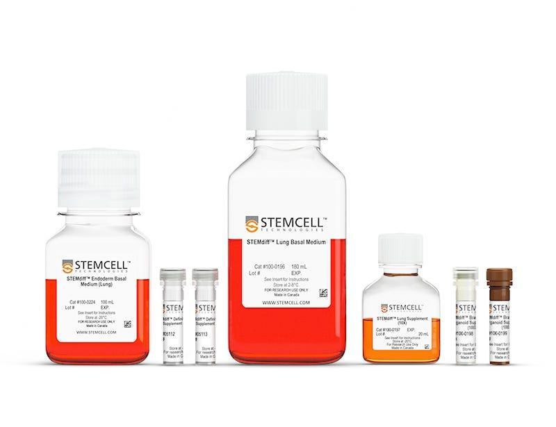 STEMdiff™ Branching Lung Organoid Kit