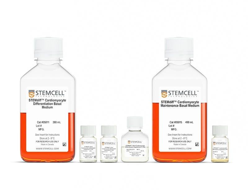 STEMdiff™ Atrial Cardiomyocyte Differentiation Kit