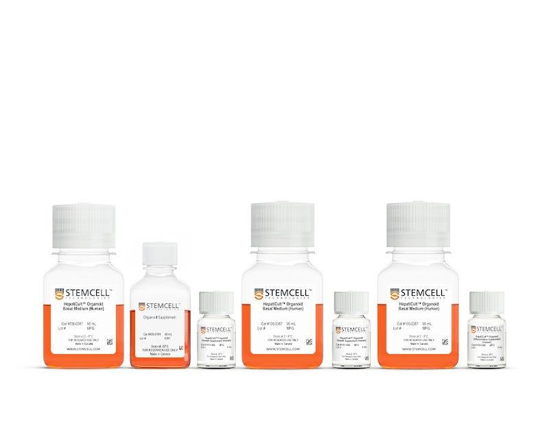 HepatiCult™ Organoid Kit (Human)