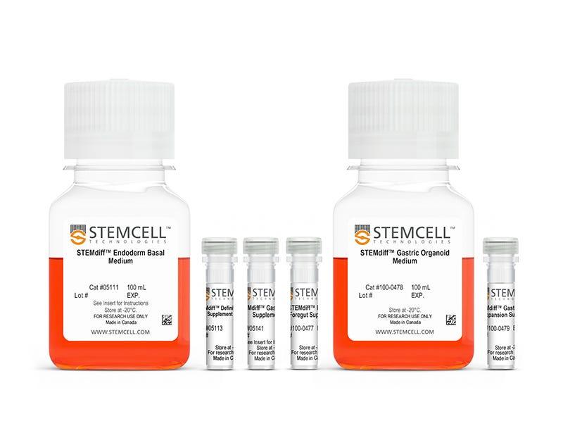 STEMdiff™ Gastric Organoid Differentiation Kit