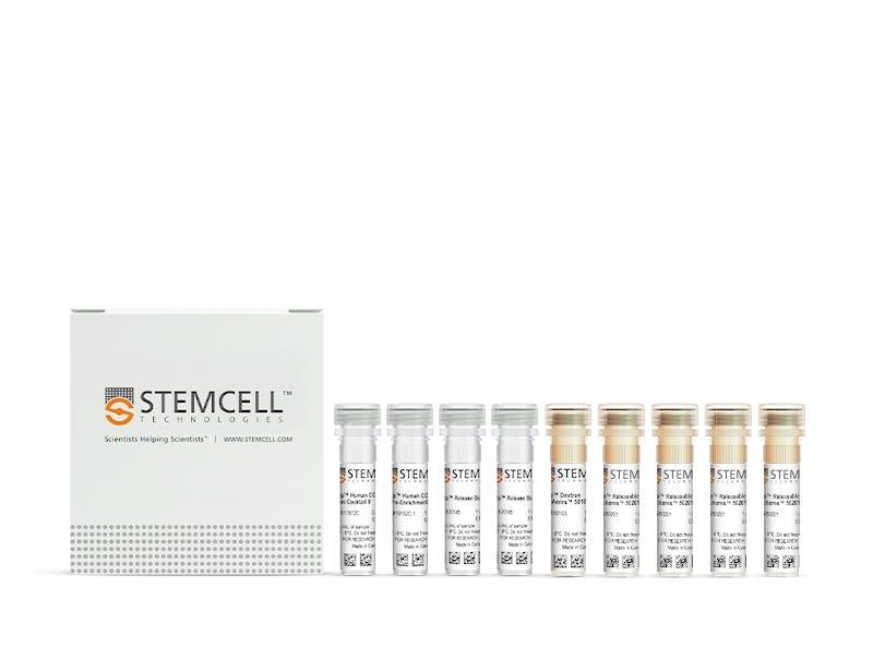 EasySep™ Human Th17 Cell Enrichment Kit II