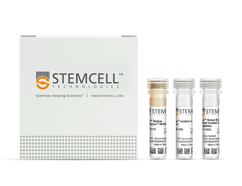 EasySep™ Human B Cell Enrichment Kit II Without CD43 Depletion
