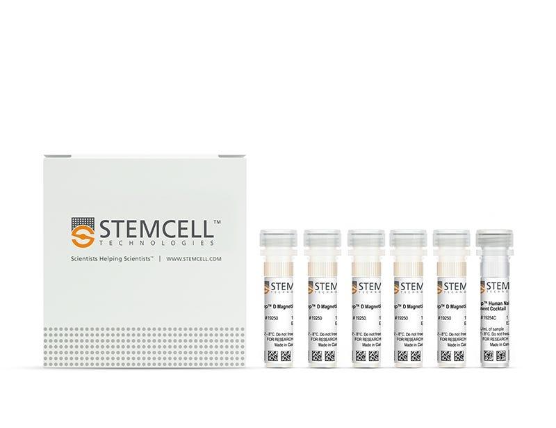EasySep™ Human Naïve B Cell Enrichment Kit