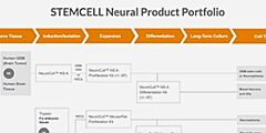 STEMCELL Neural Product Portfolio