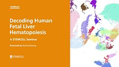 Decoding Human Fetal Liver Hematopoiesis