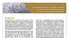 Endothelial Protein C Receptor (EPCR): A New Marker for Identification and Positive Selection of Mouse Hematopoietic Stem Cells
