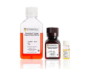 PneumaCult™ Airway Organoid Kit