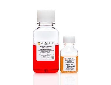 MesenCult™ Osteogenic Differentiation Kit (Human)