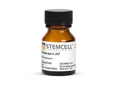 Collagenase A, ACF|07434