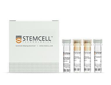 EasySep™ Non-Human Primate B Cell Isolation Kit