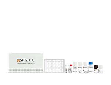 Human SARS-CoV-2 Nucleoprotein IgG Antibody ELISA Kit