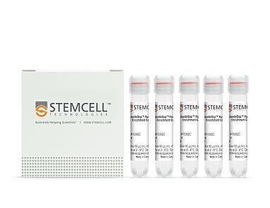 RosetteSep™ Human ILC2 Enrichment Kit