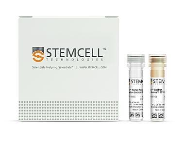 EasySep™ Human Naïve CD4+ T Cell Isolation Kit II|17555