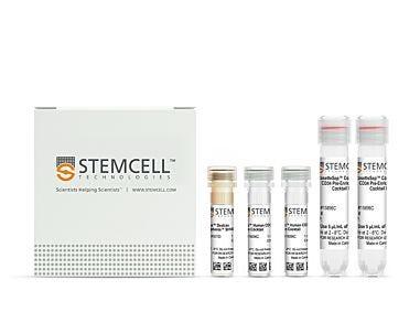 EasySep™ Human Cord Blood CD34 Positive Selection Kit II|17896