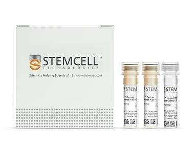 EasySep™ Human Progenitor Cell Enrichment Kit II|17936