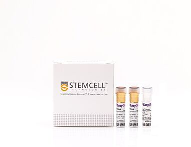 EasySep™ Human Progenitor Cell Enrichment Kit II|17936