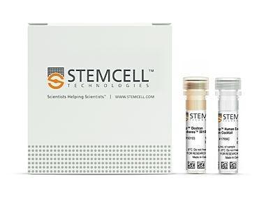 EasySep™ Human Eosinophil Isolation Kit