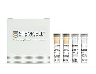 EasySep™ Human Naïve Pan T Cell Isolation Kit|17961