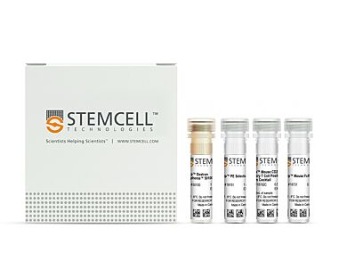 EasySep™ Mouse CD25 Regulatory T Cell Positive Selection Kit|18782