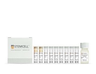 EasySep™ Serology Whole Blood CD19 Positive Selection Kit