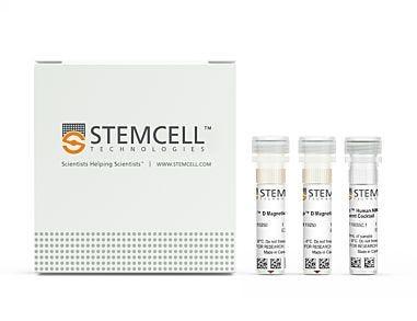EasySep™ Human NK Cell Enrichment Kit|19055