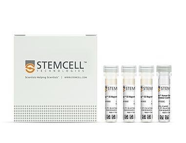 EasySep™ Human Gamma/Delta T Cell Isolation Kit 19255