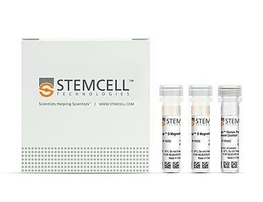 EasySep™ Human Pan-B Cell Enrichment Kit|19554