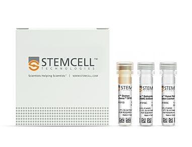 EasySep™ Human Naïve CD4+ T Cell Isolation Kit 19555