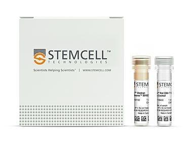 EasySep™ Rat CD8+ T Cell Isolation Kit 19643