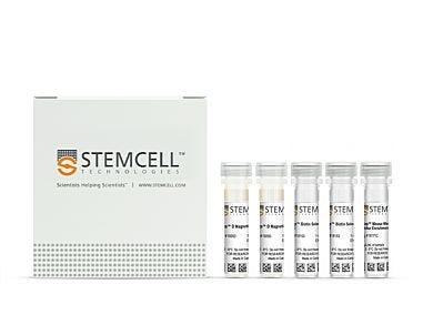 EasySep™ Mouse Mesenchymal Stem/Progenitor Cell Enrichment Kit