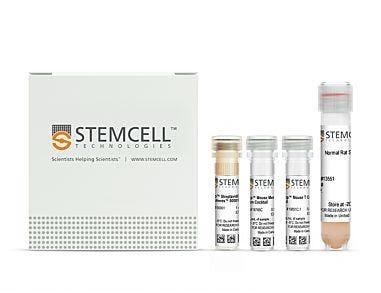 EasySep™ Mouse Pan-Naïve T Cell Isolation Kit|19848