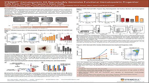 STEMdiff Hematopoietic Kit Reproducibly Generates Functional Hematopoietic Progenitor Cells