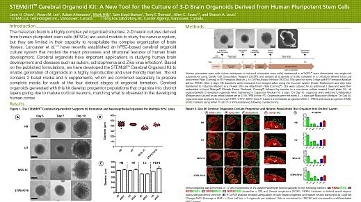 STEMdiff™ Cerebral Organoid Kit: A New Tool for the Culture of 3D Brain Organoids Derived from hPSCs