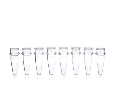 Axygen® 0.2 mL PCR Strip Tubes, 8 Tubes/Strip