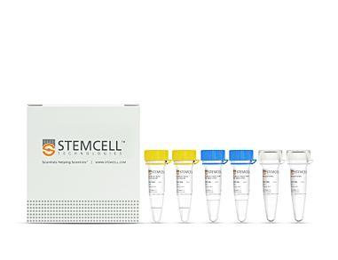 STEMscript™ cDNA Synthesis Kits 79003
