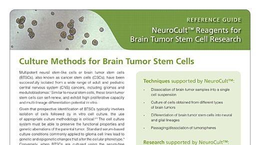 NeuroCult™: Reagents for Brain Tumor Stem Cell Research