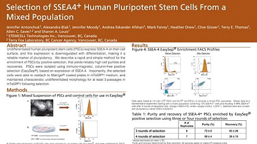 Selection of SSEA4+ Human Pluripotent Stem Cells from a Mixed Population