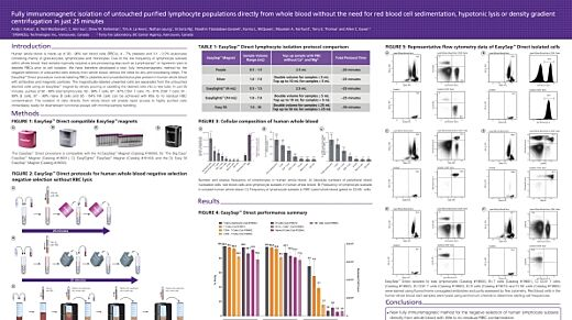 Immunomagnetic Cell Isolation of Untouched Lymphocyte Populations Directly from Whole Blood