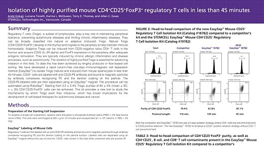 Isolation of Highly Purified Mouse CD4+CD25+Foxp3+ Regulatory T Cells in Less