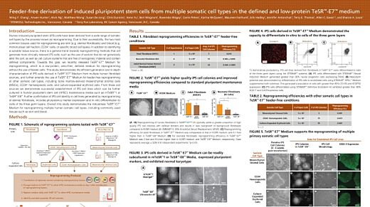Feeder-Free Derivation of Induced Pluripotent Stem Cells from Multiple Somatic Cell Types in the Defined and Low-Protein TeSR™-E7™ Medium