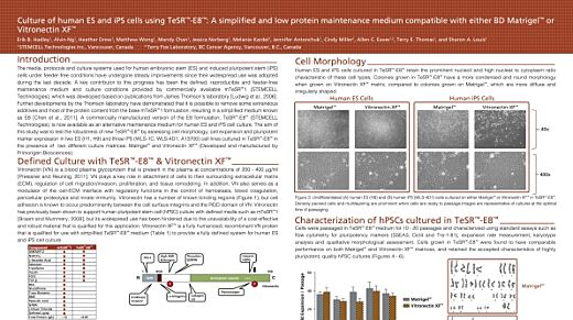 Culture of Human ES and iPS Cells Using TeSR™-E8™: a Simplified and Low Protein Maintenance Medium Compatible With Vitronectin XF™