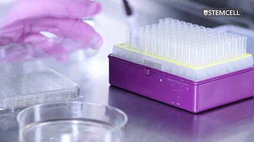 CHO Cell Cloning Procedure: Semi-Solid Cloning with ClonaCell™-CHO