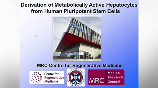 Derivation of Metabolically Active Hepatocytes from Human Pluripotent Stem Cells