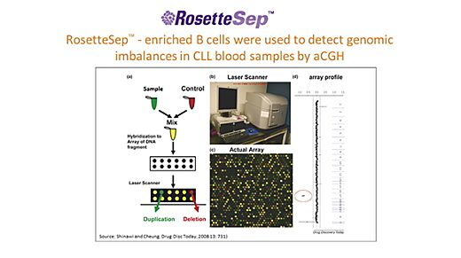 Enhance Sensitivity of Downstream Assays with Highly Purified Cells for Multiple Myeloma and CLL Research